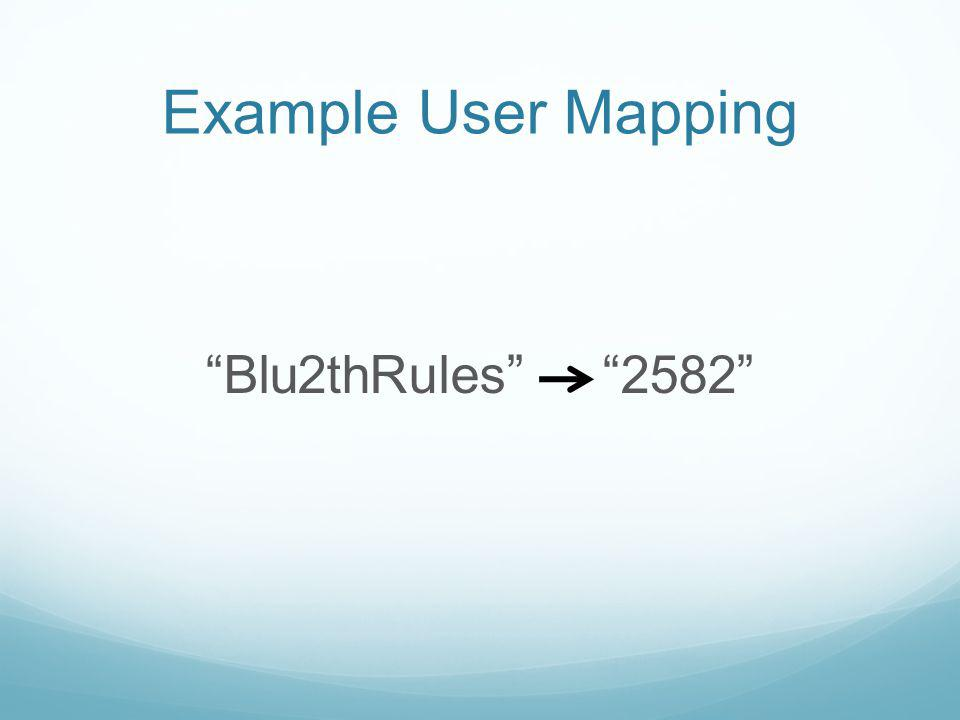 Example User Mapping Blu2thRules 2582