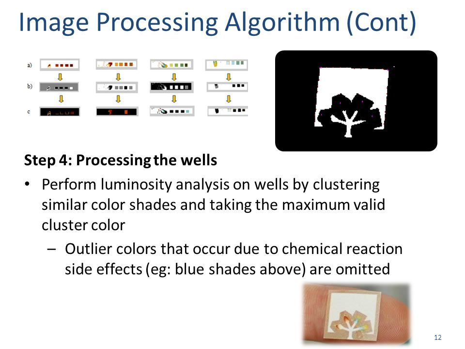 12 Image Processing Algorithm (Cont) Step 4: Processing the wells Perform luminosity analysis on wells by clustering similar color shades and taking the maximum valid cluster color –Outlier colors that occur due to chemical reaction side effects (eg: blue shades above) are omitted