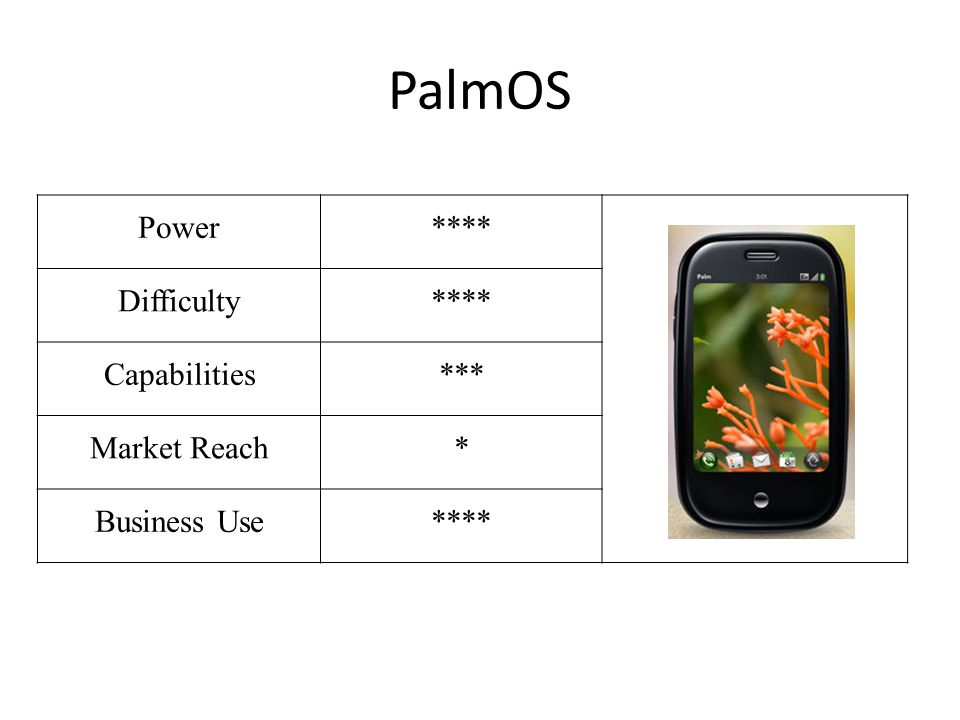 PalmOS Power**** Difficulty**** Capabilities*** Market Reach* Business Use****