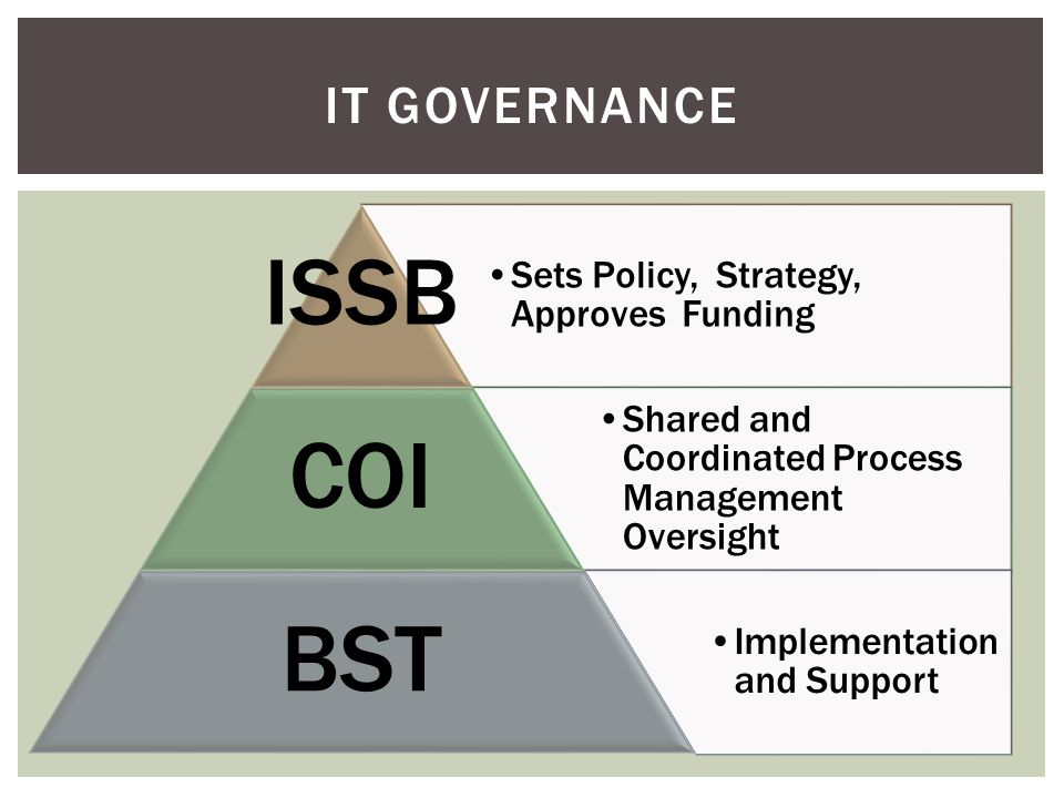 Sets Policy, Strategy, Approves Funding ISSB Shared and Coordinated Process Management Oversight COI Implementation and Support BST IT GOVERNANCE