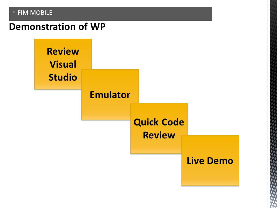 Review Visual Studio Emulator Quick Code Review Live Demo FIM MOBILE