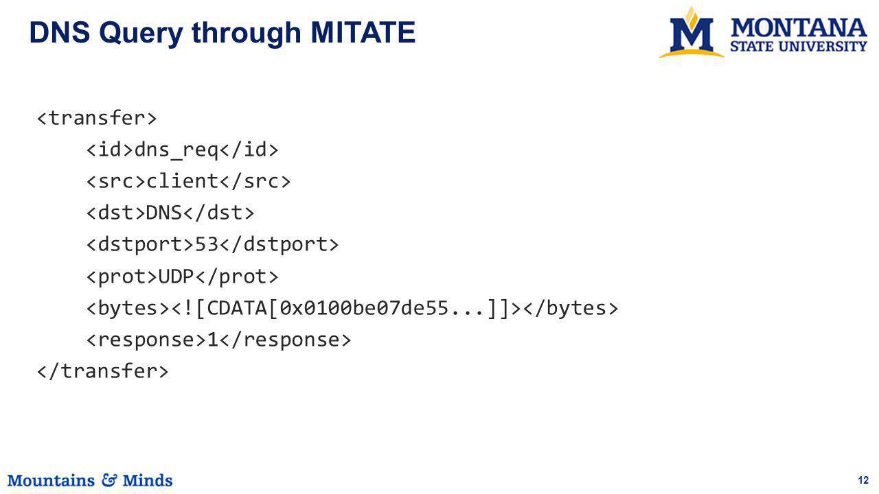 12 DNS Query through MITATE dns_req client DNS 53 UDP 1
