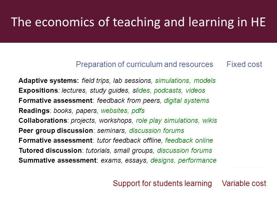 The economics of teaching and learning in HE Preparation of curriculum and resources Adaptive systems: field trips, lab sessions, simulations, models