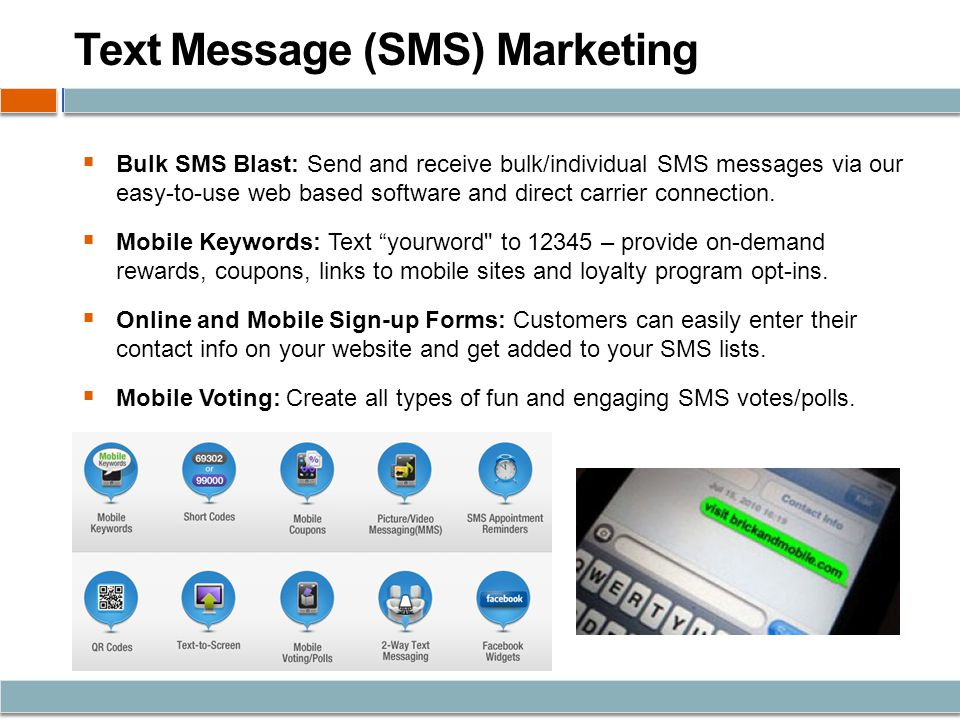 Text Message (SMS) Marketing Bulk SMS Blast: Send and receive bulk/individual SMS messages via our easy-to-use web based software and direct carrier connection.