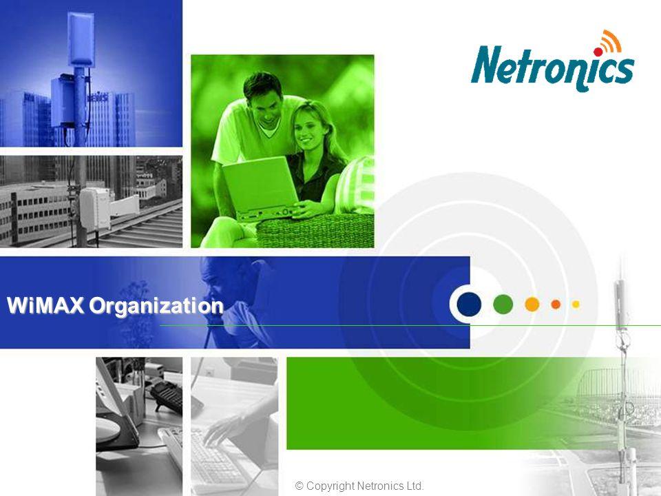 © Copyright Netronics Ltd. WiMAX Organization