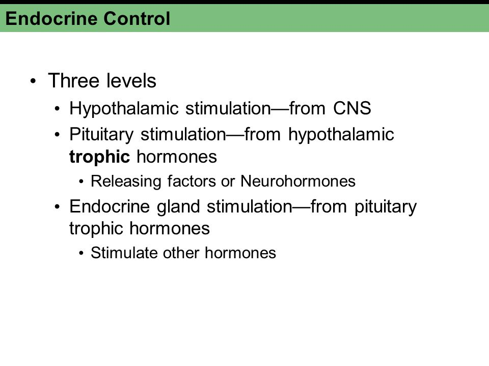 Endocrine Control Three levels Hypothalamic stimulationfrom CNS Pituitary stimulationfrom hypothalamic trophic hormones Releasing factors or Neurohorm