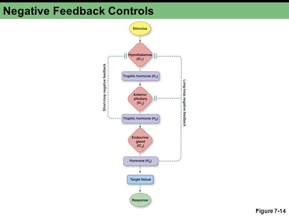Negative Feedback Controls Figure 7-14