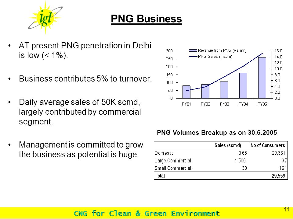 CNG for Clean & Green Environment 11 PNG Business PNG Volumes Breakup as on 30.6.2005 AT present PNG penetration in Delhi is low (< 1%).