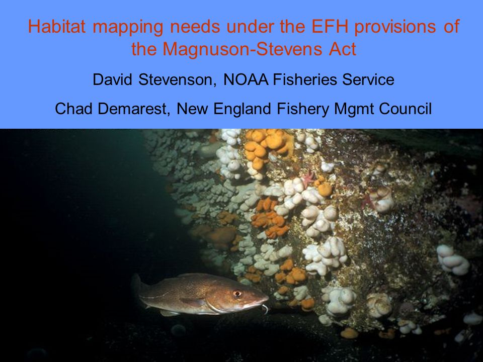 EFH Final Rule Response to comments The rule advocates a risk-averse approach to identifying EFH because of the uncertainty of our knowledge of habitat and its relation to fisheries production.