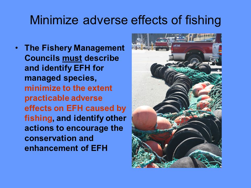 NOAA consultations on projects that may adversely affect EFH