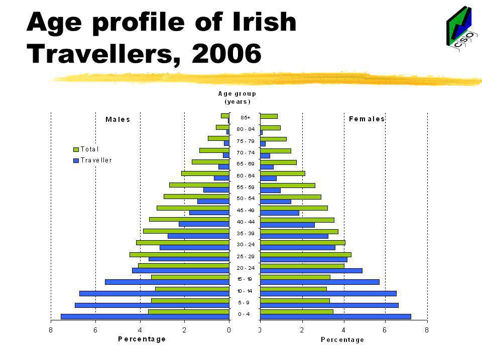 Age profile of Irish Travellers, 2006