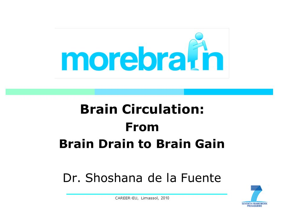 CAREER-EU, Limassol, 2010 Brain Circulation: From Brain Drain to Brain Gain Dr.