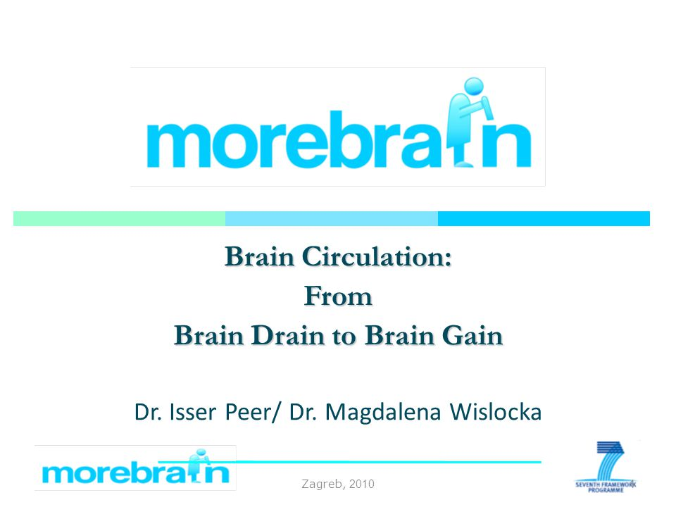 Zagreb, 2010 Brain Circulation: From Brain Drain to Brain Gain Dr.