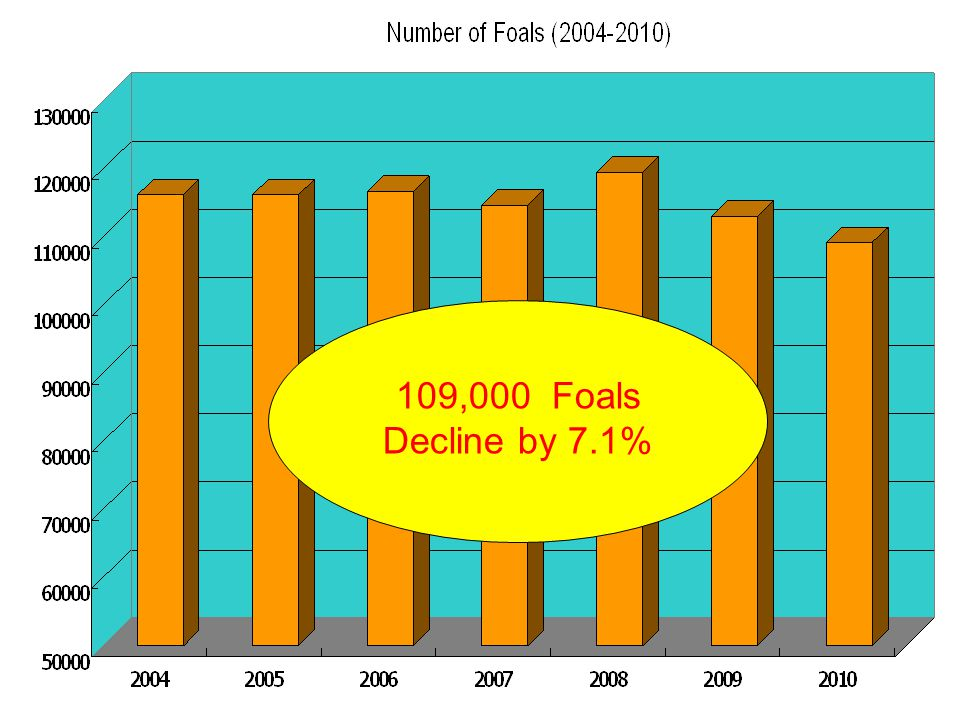 109,000 Foals Decline by 7.1%