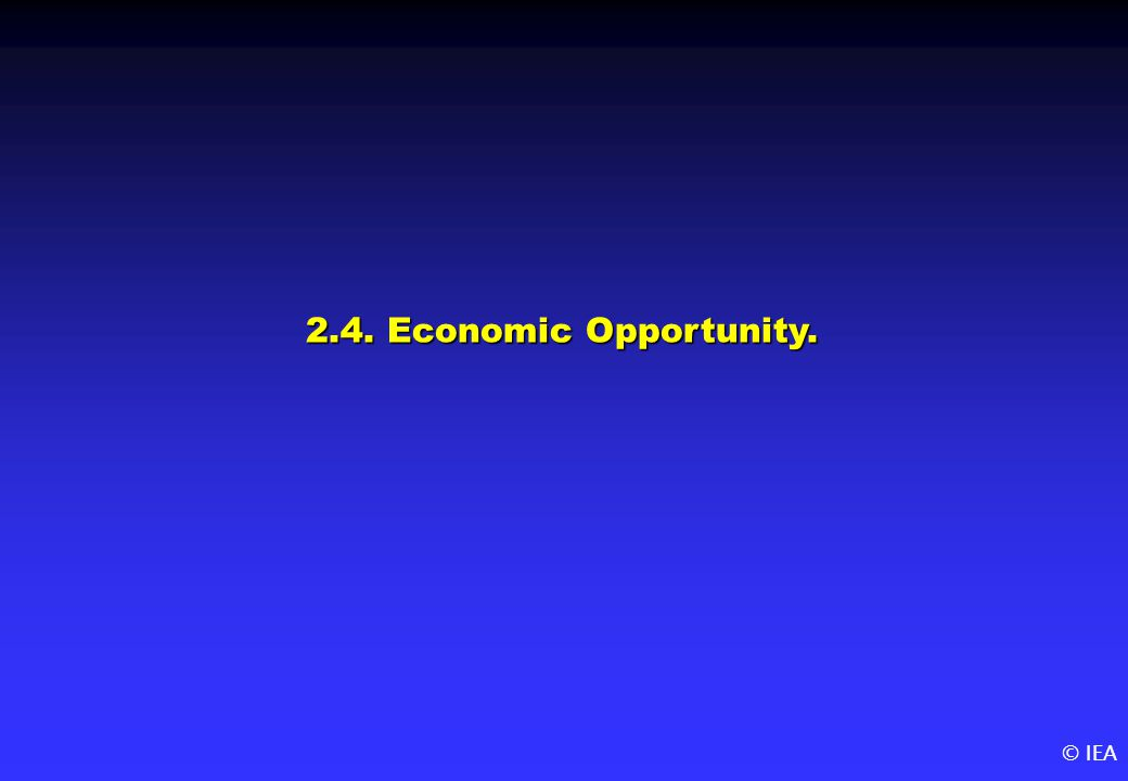 © IEA 2.4. Economic Opportunity.