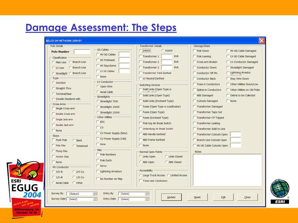 Damage Assessment: The Steps