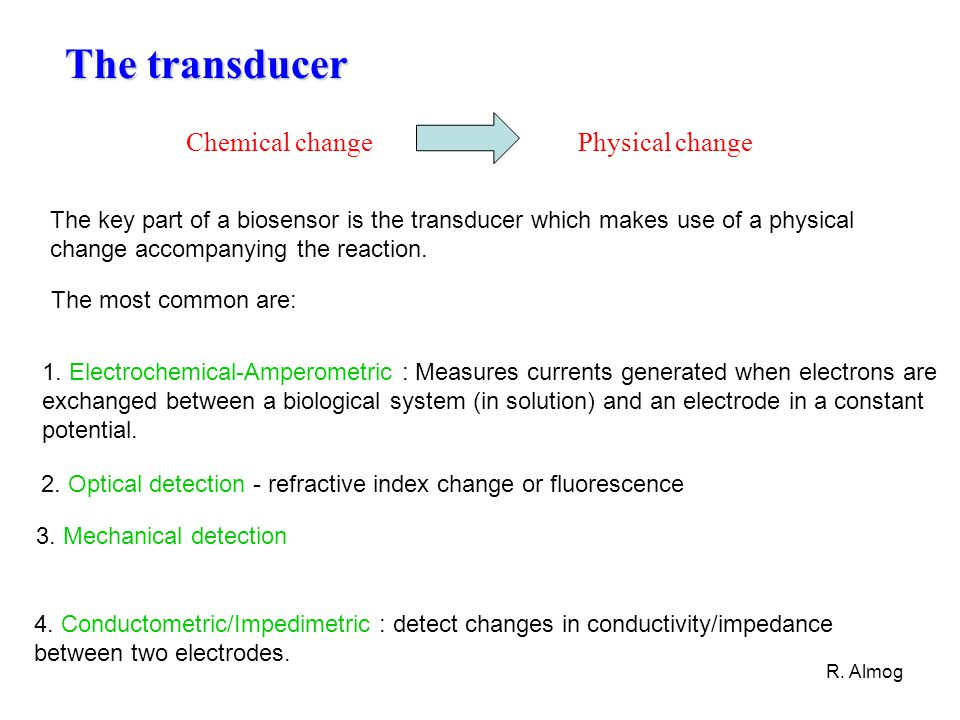 R. Almog 1. Electrochemical-Amperometric : Measures currents generated when electrons are exchanged between a biological system (in solution) and an e