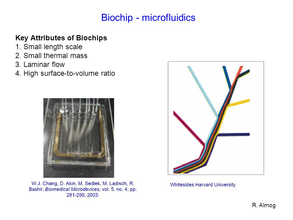 R. Almog Biochip - microfluidics Key Attributes of Biochips 1. Small length scale 2. Small thermal mass 3. Laminar flow 4. High surface-to-volume rati