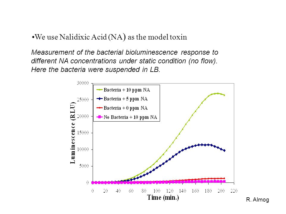 R. Almog Measurement of the bacterial bioluminescence response to different NA concentrations under static condition (no flow). Here the bacteria were