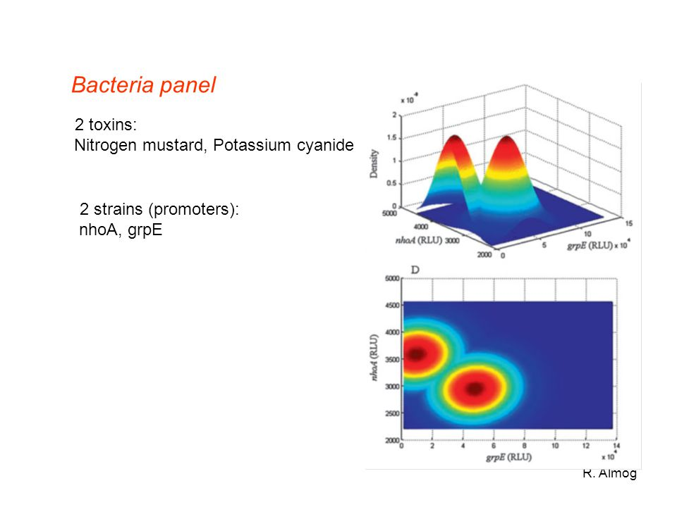 R. Almog Bacteria panel 2 toxins: Nitrogen mustard, Potassium cyanide 2 strains (promoters): nhoA, grpE