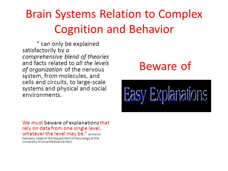Attention and Cognitive Enhancement One of the strongest findings in brain research, is that attention is almost magical in its ability to physically alter the brain and enlarge functional circuits (neuroplasticity).