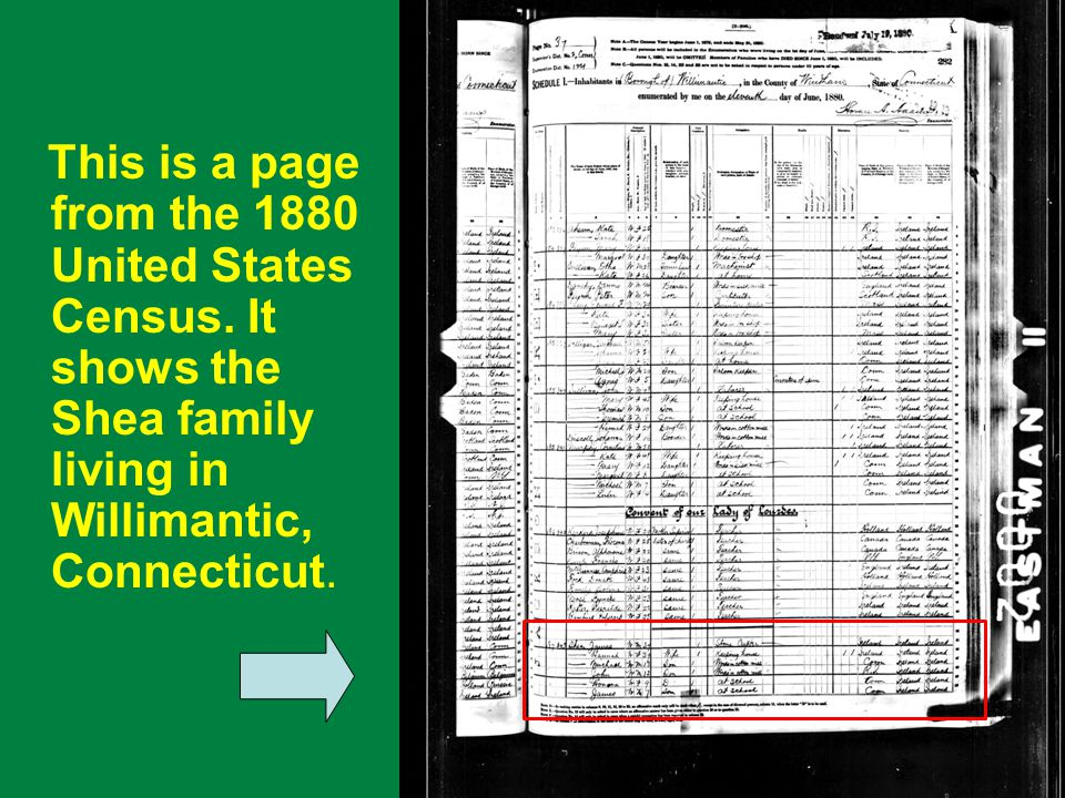 . This is a page from the 1880 United States Census. It shows the Shea family living in Willimantic, Connecticut.