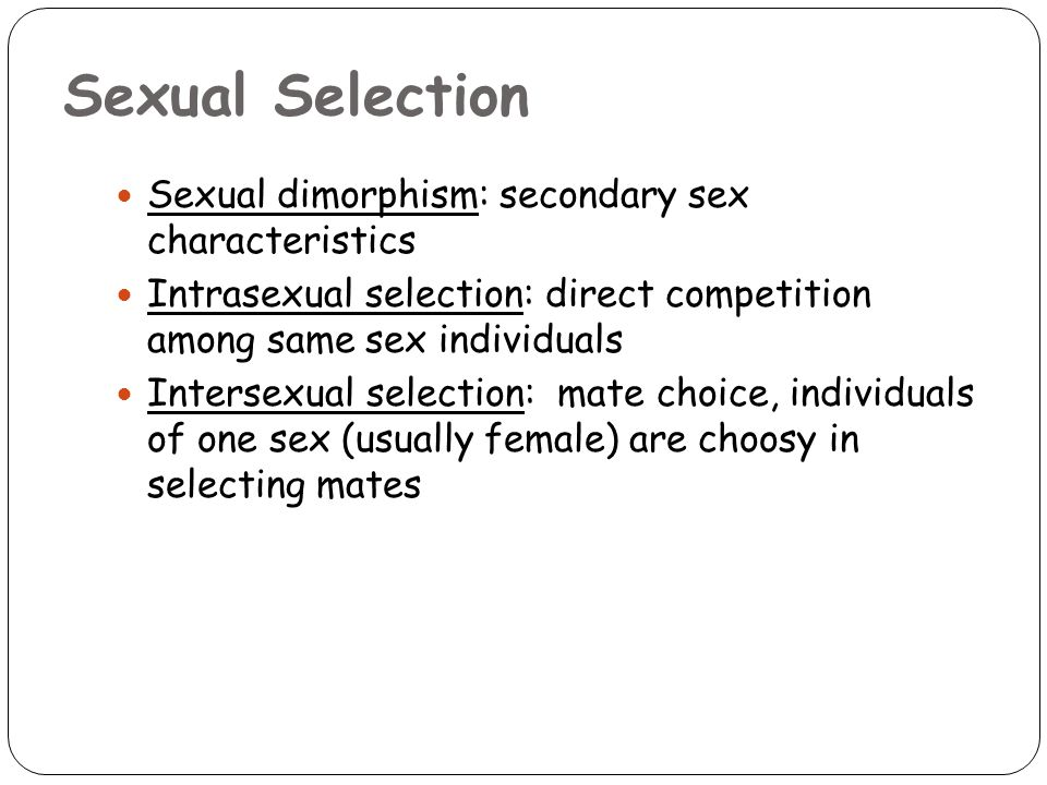 Sexual Selection Sexual dimorphism: secondary sex characteristics Intrasexual selection: direct competition among same sex individuals Intersexual selection: mate choice, individuals of one sex (usually female) are choosy in selecting mates