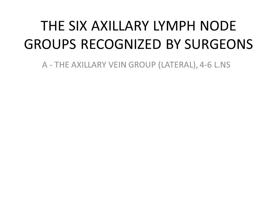 A - THE AXILLARY VEIN GROUP (LATERAL), 4-6 L.NS