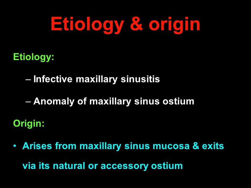 Etiology & origin Etiology: –Infective maxillary sinusitis –Anomaly of maxillary sinus ostium Origin: Arises from maxillary sinus mucosa & exits via i