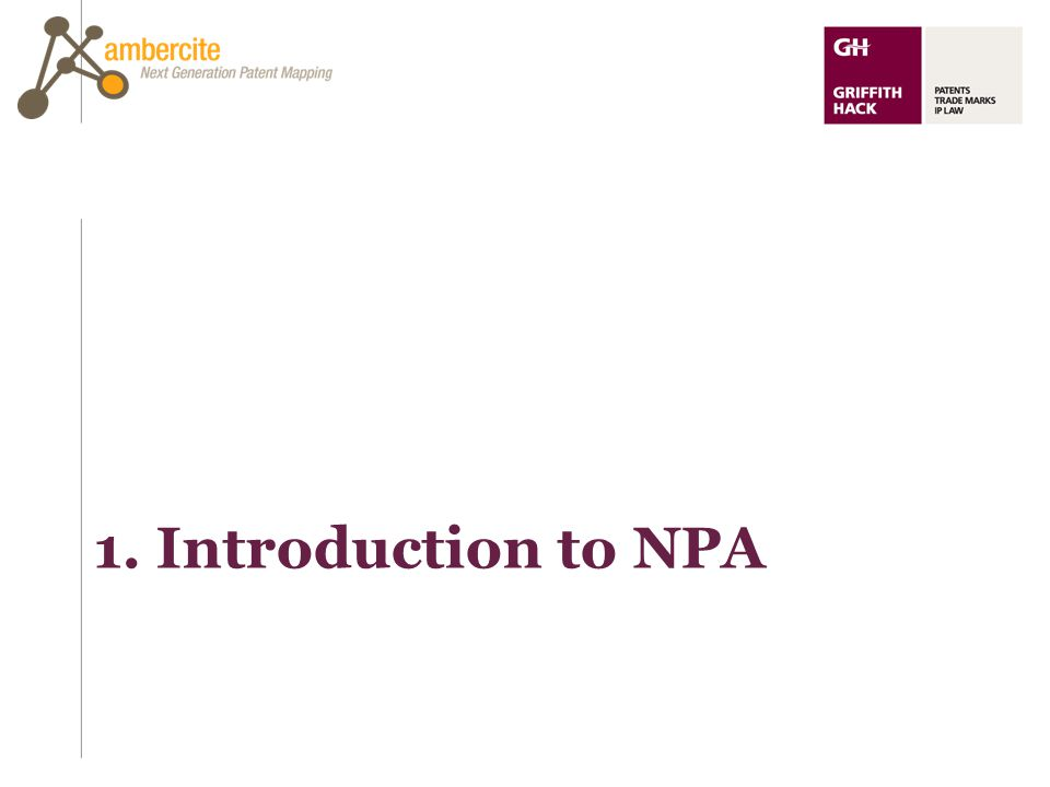 1. Introduction to NPA