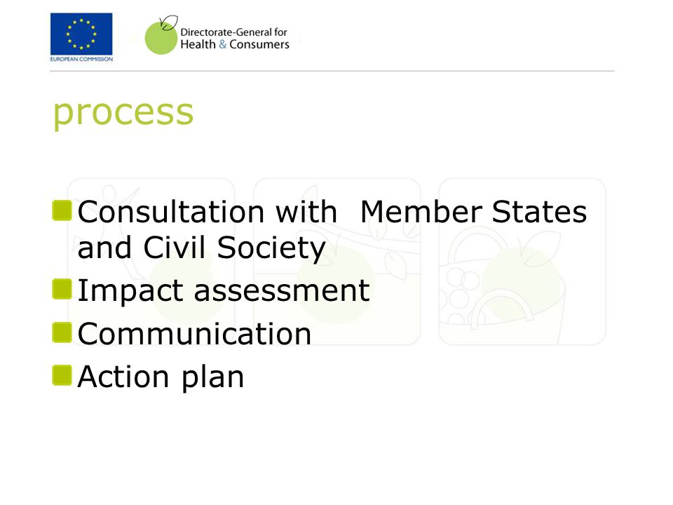 process Consultation with Member States and Civil Society Impact assessment Communication Action plan