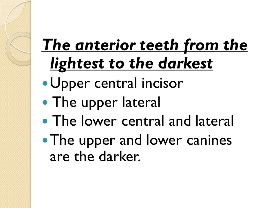The anterior teeth from the lightest to the darkest Upper central incisor The upper lateral The lower central and lateral The upper and lower canines are the darker.