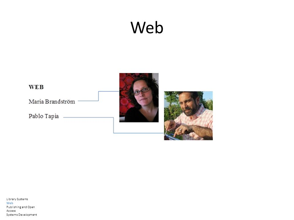Web Library Systems Web Publishing and Open Access Systems Development