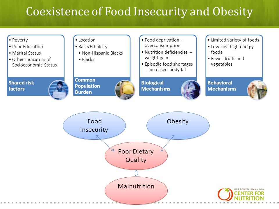 Coexistence of Food Insecurity and Obesity Poverty Poor Education Marital Status Other Indicators of Socioeconomic Status Shared risk factors Location Race/Ethnicity Non-Hispanic Blacks Blacks Common Population Burden Food deprivation – overconsumption Nutrition deficiencies – weight gain Episodic food shortages - increased body fat Biological Mechanisms Limited variety of foods Low cost high energy foods Fewer fruits and vegetables Behavioral Mechanisms Food Insecurity Obesity Malnutrition Poor Dietary Quality
