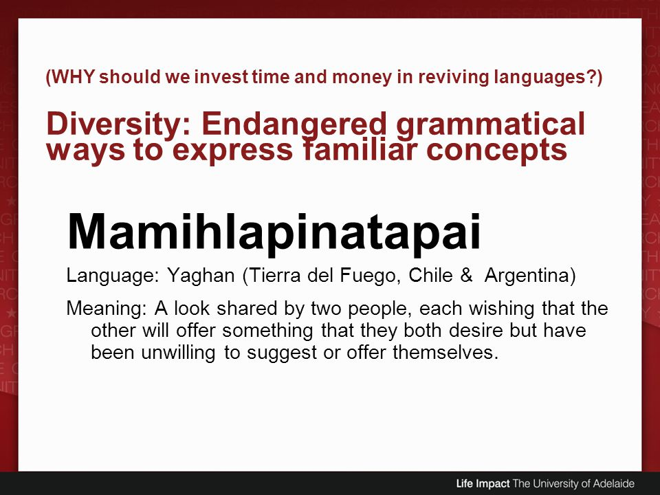(WHY should we invest time and money in reviving languages?) Diversity: Endangered grammatical ways to express familiar concepts Mamihlapinatapai Lang