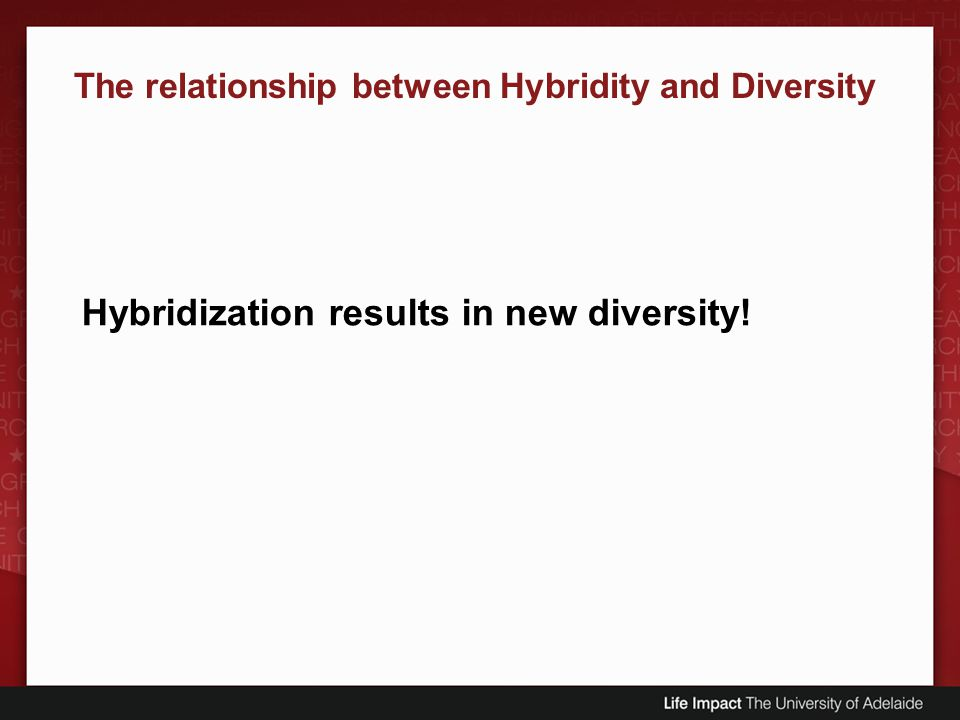 Hybridization results in new diversity! The relationship between Hybridity and Diversity