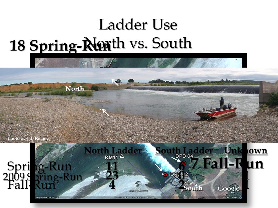 Photo by J.d. Richey 18 Spring-Run 7 Fall-Run Ladder Use North vs.