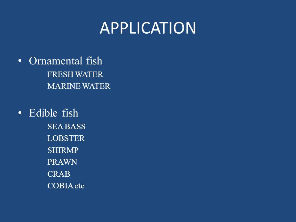 APPLICATION Ornamental fish FRESH WATER MARINE WATER Edible fish SEA BASS LOBSTER SHIRMP PRAWN CRAB COBIA etc