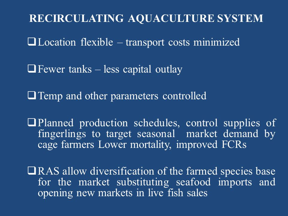 RECIRCULATING AQUACULTURE SYSTEM Location flexible – transport costs minimized Fewer tanks – less capital outlay Temp and other parameters controlled
