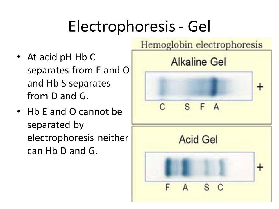 Electrophoresis - Gel At acid pH Hb C separates from E and O and Hb S separates from D and G. Hb E and O cannot be separated by electrophoresis neithe