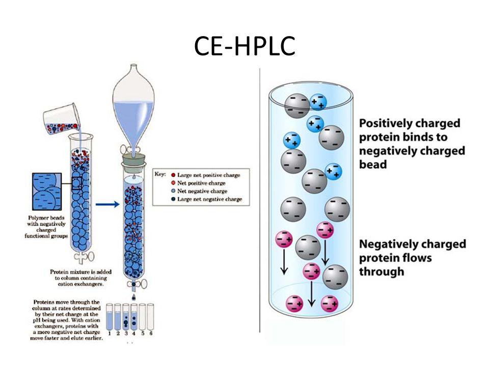 CE-HPLC