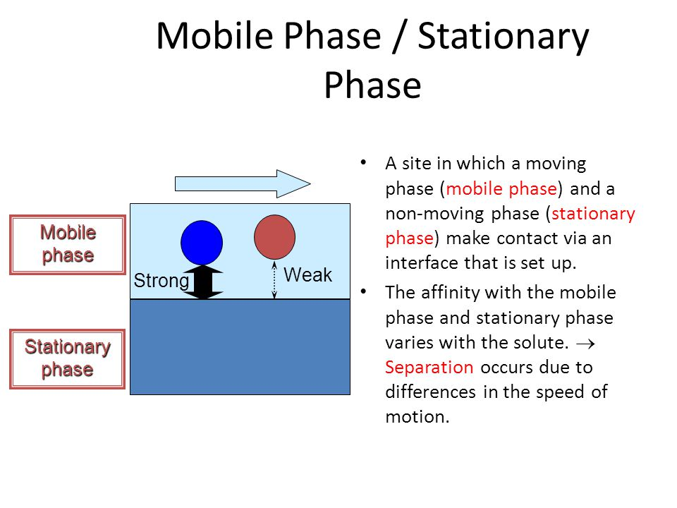 Mobile Phase / Stationary Phase A site in which a moving phase (mobile phase) and a non-moving phase (stationary phase) make contact via an interface