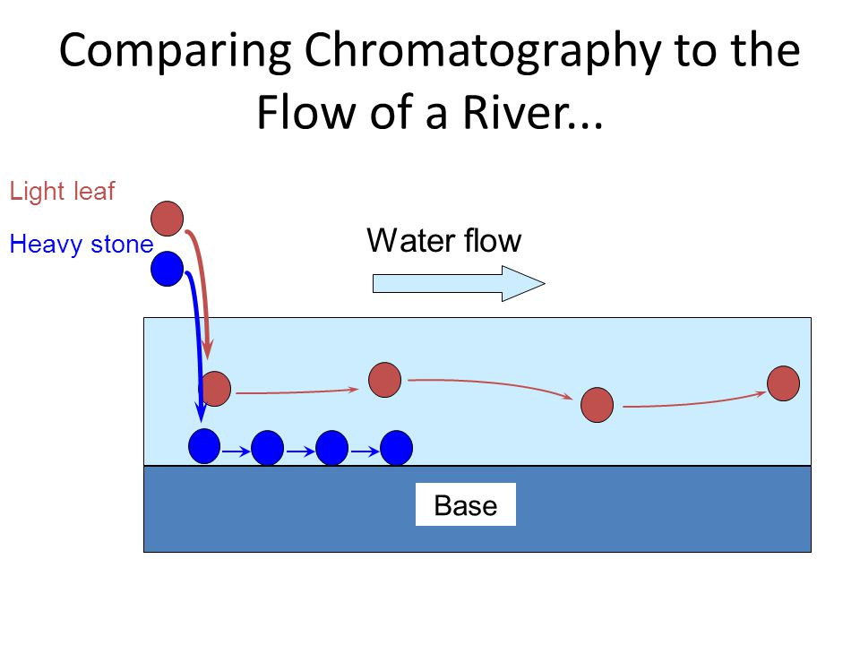 Comparing Chromatography to the Flow of a River... Base Water flow Light leaf Heavy stone