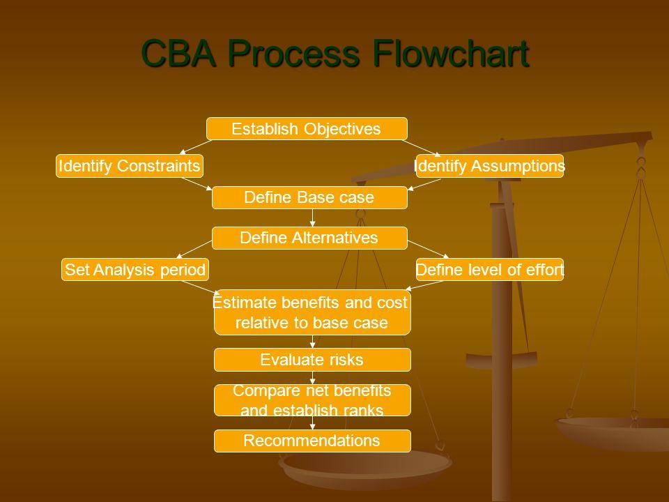Establish Objectives Identify ConstraintsIdentify Assumptions Define Base case Set Analysis period Define Alternatives Define level of effort Estimate