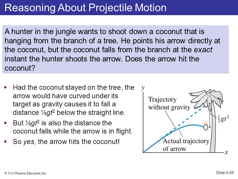 © 2013 Pearson Education, Inc. Had the coconut stayed on the tree, the arrow would have curved under its target as gravity causes it to fall a distanc