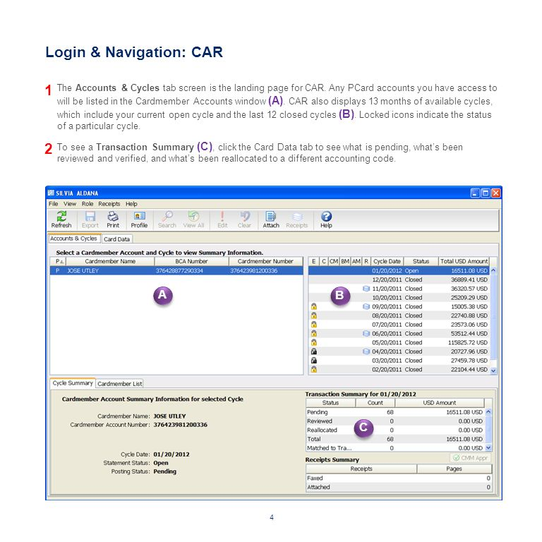 The Card Data (D) tab allows you to drill down and view transactions for any cycle.