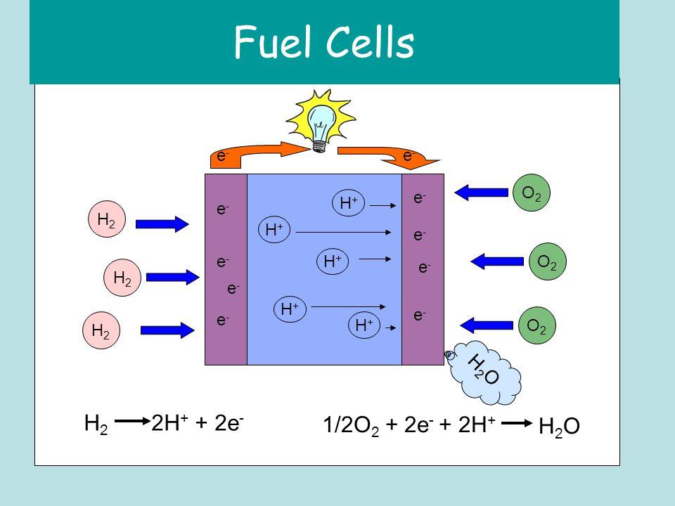 Fuel Cells H2H2 H2H2 H2H2 O2O2 O2O2 O2O2 H+H+ H+H+ H+H+ H+H+ H+H+ H2OH2O e-e- e-e- e-e- e-e- e-e- e-e- e-e- e-e- e-e- e-e- H 2 2H + + 2e - 1/2O 2 + 2e - + 2H + H2OH2O