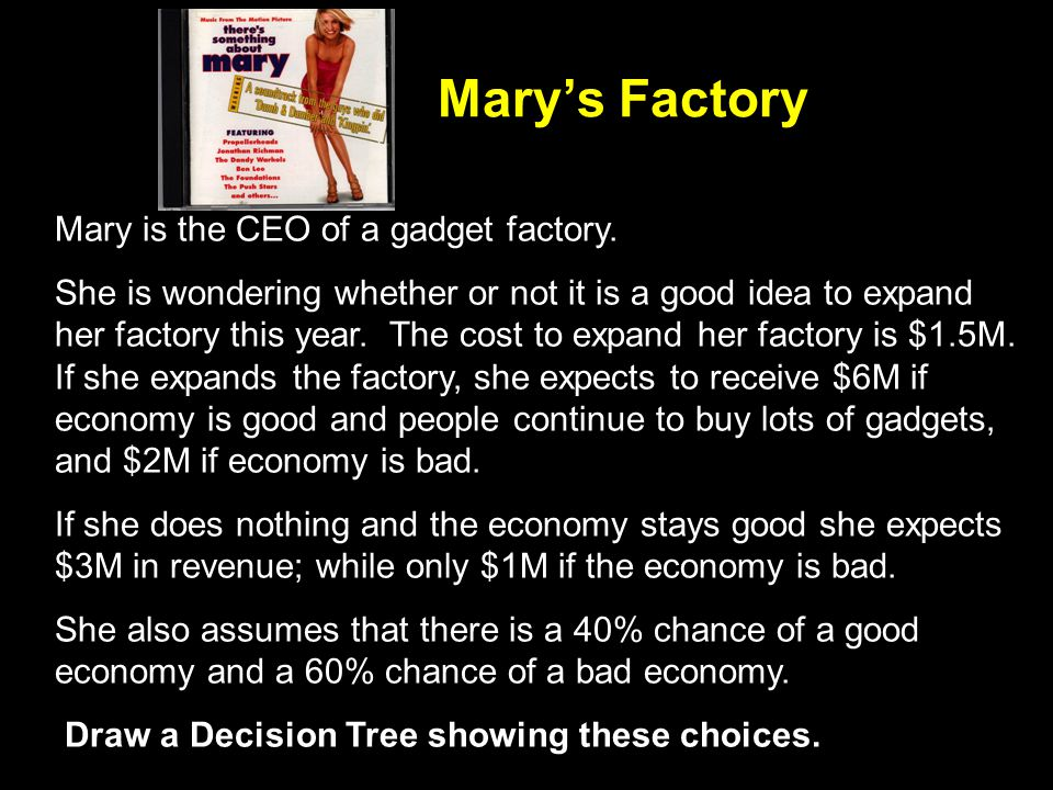 Marys Factory Mary is the CEO of a gadget factory.