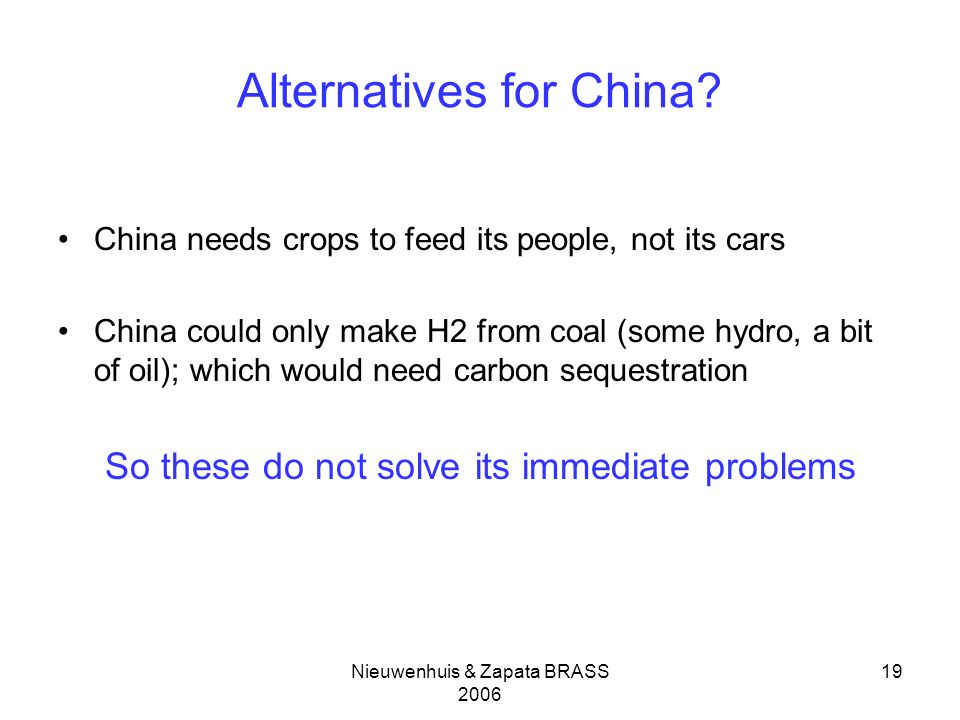 Nieuwenhuis & Zapata BRASS 2006 19 Alternatives for China? China needs crops to feed its people, not its cars China could only make H2 from coal (some