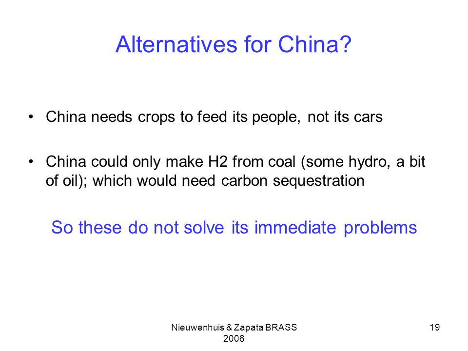 Nieuwenhuis & Zapata BRASS 2006 19 Alternatives for China.